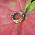 Nymph ring • circle shape (Made to order | size ) สั่งทำไซด์ได้นะคะ ใครชอบแบบไม่ใหญ่ต้องทรงนี้เลย ถึงจะวงเล็กแต่ก็เห็นลายไม้ได้ชัดเจน✨ 💖 . สอบถามรายละเอียดการสั่งทำไซด์ได้นะคะ (Free shipping in Thailand) , UNISEX , .  #wood #teakwood #necklace #handcarft #Nympheart