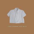 """Fabric : Linen  Freesize Bust 38"""" Length 17""""  #mitrbkk #mitr #Mitr #เสื้อครอป #เสื้อผ้าผู้หญิง #เสื้อผู้หญิง #เสื้อครอปแขนสั้น #เสื้อแขนสั้น #แขนสั้น #เสื้อคอปก #คอปก #เสื้อสีขาว #สีขาว #croptop"""